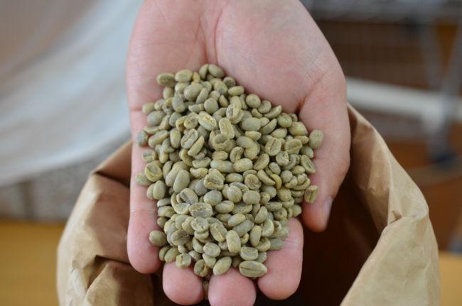 緑のコーヒー豆